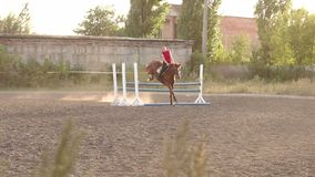 Professional rider on a horse jumps over a barrier. Girl riding a horse jumps over a wooden barrier on an arena at sunset. Horse`s hoof creates a lot of dust stock footage