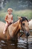 Girl riding a horse. On nature Royalty Free Stock Photo