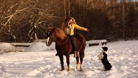 Girl riding a horse on a ranch. Fashionable beautiful girl stroking a horse. Girl gives commands to the dog sitting on a stock video footage