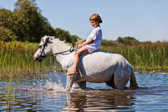 Girl riding a horse in a river. Little girl riding a horse in a river Royalty Free Stock Images