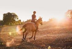Girl riding horse at sunset. Stock Photos