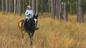 Girl riding a horse walking in the woods stock footage