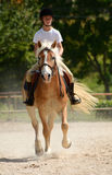 Girl riding pony. Full body front view of a preteen Caucasian girl riding her Haflinger pony in the dressage arena outdoors Stock Images