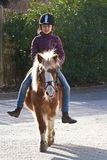 Girl riding a pony. Young girl riding a pony/horse in Denmark Royalty Free Stock Images