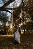 A girl is riding on a swing in an autumn park at sunset Stock Photography