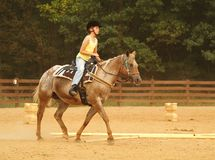 Girl Riding Western. A girl riding a horse with western tack Stock Photo