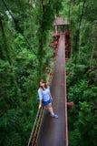 Girl on the rope bridge Royalty Free Stock Image