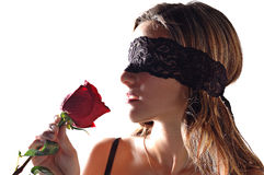 Girl with a rose Stock Image