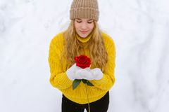 Girl with a rose on the background of snow stock photos