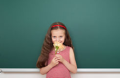 Girl with rose flower near school board Royalty Free Stock Photos