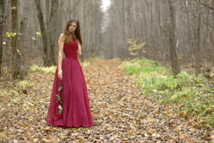 Girl with rose in the forest Stock Photography