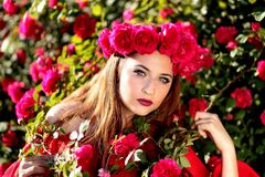 Girl, Roses, Red, Wreath, Flowers Stock Images