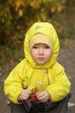 Girl with rowan Stock Photos