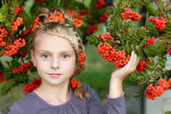 Girl with rowan. Girl in nature with beautiful hairstyle with elements rowan stock photos