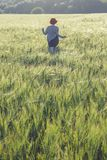 Girl running across green field in the morning Royalty Free Stock Photo
