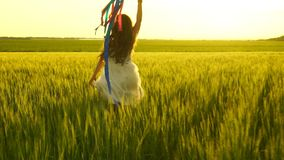 Girl running around with a kite on the field. Freedom concept. Slow motion 120fps stock footage
