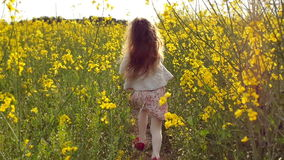 Girl running cross the field at sunset.Slow motion. Little girl running cross the flowers field at sunset then she stops and turns .Slow motion stock video
