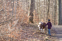 Girl running with a horse/pony. Young girl running with a horse/pony in a forest Stock Images