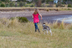 Girl running with whippet on beach Stock Photography