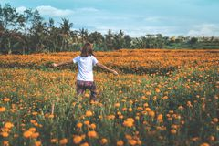 Girl Running on Yellow Flowers royalty free stock photography