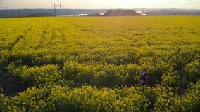 A girl runs across a rape field, enjoying nature, sunlight, flowers and blue sky. Aerial footage