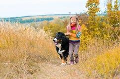 girl runs around with big dog on autumn hills of race stock photos