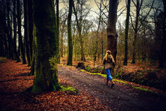 Girl runs in the forest Royalty Free Stock Photo