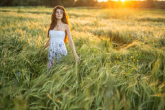 Girl in rye field Stock Images