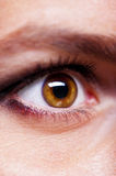 Girl's eye closeup Royalty Free Stock Photography