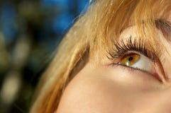 Girl's eye closeup Royalty Free Stock Photo