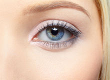 Girl's eye-zone portrait Stock Photos