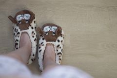 The girl`s foot in funny rabbits house slippers on the floor. Top view.  stock image