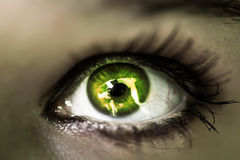 Girl's green eye close up. Macro Stock Images