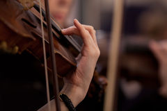 Girl's hand on the fingerboard violin Royalty Free Stock Photo