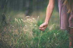 Girl& x27; s-hand med torrt gräs Arkivbilder