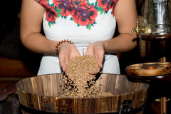 The girl`s hand pours a handful of wheat grain. In a wooden barrel Royalty Free Stock Photos