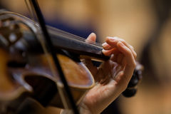 Girl's hand on the strings of a violin Stock Images