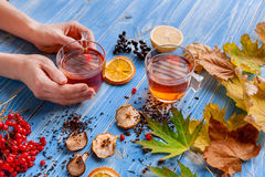Girl`s hands clutching a mug of hot tea. autumn conception. home. Girl`s hands clutching a mug of hot tea. It warmed his warmth. next to fruit, autumn leaves and Royalty Free Stock Image