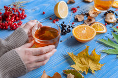 Girl`s hands clutching a mug of hot tea. autumn conception. home. Girl`s hands clutching a mug of hot tea. It warmed his warmth. next to fruit, autumn leaves and Stock Photography