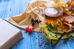 Girl`s hands clutching a mug of hot tea. autumn conception. home. Girl`s hands clutching a mug of hot tea. It warmed his warmth. next to fruit, autumn leaves and Royalty Free Stock Photos