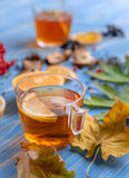 Girl`s hands clutching a mug of hot tea. autumn conception. home. Girl`s hands clutching a mug of hot tea. It warmed his warmth. next to fruit, autumn leaves and Royalty Free Stock Images
