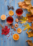 Girl`s hands clutching a mug of hot tea. autumn conception. home. Girl`s hands clutching a mug of hot tea. It warmed his warmth. next to fruit, autumn leaves and Stock Photos