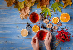 Girl`s hands clutching a mug of hot tea. autumn conception. home. Girl`s hands clutching a mug of hot tea. It warmed his warmth. next to fruit, autumn leaves and Royalty Free Stock Photography