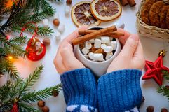 The girl`s hands hold a cup of cocoa with marshmallow and cinnamon Stock Image