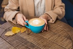 Girl`s hands holding a hot cup of coffee close-up. Autumn royalty free stock photo