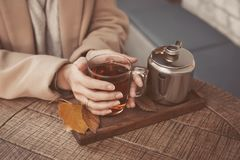 Girl`s hands holding a hot cup of tea close-up. Cafe royalty free stock photos