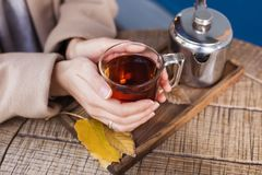 Girl`s hands holding a hot cup of tea close-up stock photography