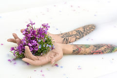 Girl`s hands with tattoos and flowers. Hands of a girl with colorful tattoos on the surface of milk with flower petals. She holds multicolored flowers on her royalty free stock images