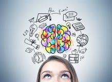 Girl S Head And An Education Idea Stock Photography