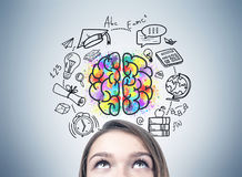 Girl s head and an education idea. Close up of a blonde woman s head. She is standing near a gray wall and looking upwards. An education drawing and a brain stock photography
